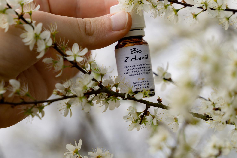 Zirbenöl in Natur mit weißen Blüten